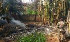 PMA flagra professora realizando incêndio em resíduos em terreno e lhe aplica multa de R$ 1,5 mil