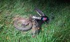 Motociclista morre ao bater em caminhão