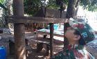 PMA autua sitiante por manter macaco-prego ilegalmente em cativeiro em Deodápolis