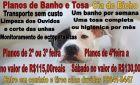 Confira os planos de Banho e Tosa na Cia do Bicho em Fátima do Sul