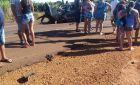 Agora: acidente entre dois carros deixa uma vítima fatal em Vicentina