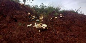 PMA autua fazendeiro em R$ 15 mil por enterrar embalagens de agrotóxicos