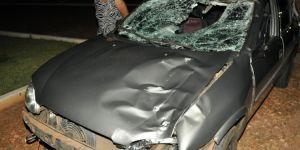 Em Gloria de Dourados, vaca na pista causa colisão com 2 veículos