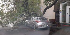 Chuva rápida deixa rastro de destruição em Dourados
