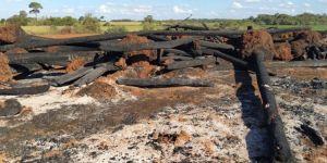 Justiça libera policiais acusados de cobrar para autorizar queimadas e não aplicar multas ambientais